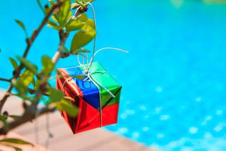 gift box op chrismas boom op de boom, in de buurt bij het zwembad