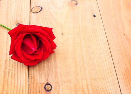 wood table: red rose on wood table,Valentine day Stock Photo