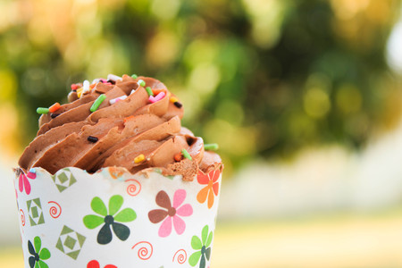 frosting': Chocolate Cupcake with creamy chocolate frosting in garden background