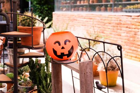 Halloween pumpkin decorate in the garden.