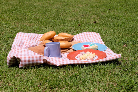 pic nic: Picnic for a summer vacation with potato , snack and cake.