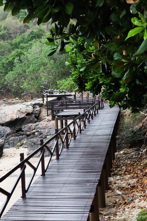 Wooden bridge and a tree at beach sea.