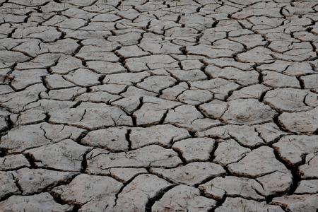 barren:  cracked texture Stock Photo