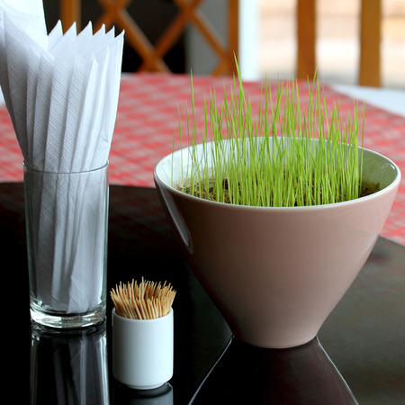 Germinating grain in a Ceramic cup on dining table Stock Photo - 26401279
