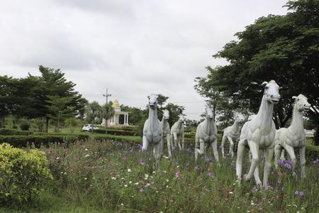 필드에 많은 말 동상입니다. 스톡 콘텐츠