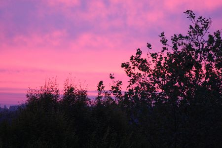 Red sky on an early winters morning