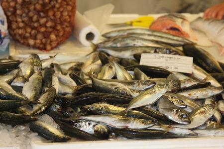sardinas: Sardinas en Venta Foto de archivo