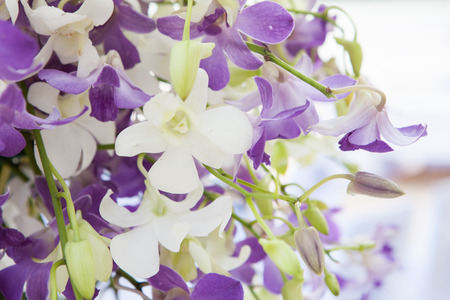 to arrange: flowers bouquet arrange for decoration in home Stock Photo