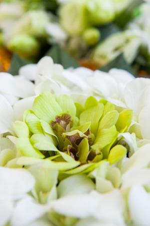 Orchideenblatter Werden Vorbereitet In Hochzeitszeremonien