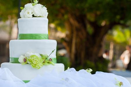 pastel boda: Blanco pastel de boda con decoraciones de rosas real