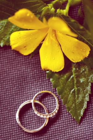 jewel box: wedding rings Stock Photo