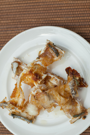 fish bones on a plate for cat