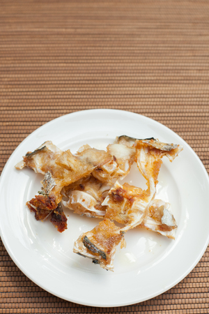 fishbone: fish bones on a plate for cat