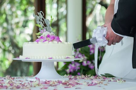 hands of bride and groom cut of a slice of a wedding cake Imagens