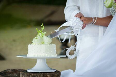 Wedding cutting a wedding cake on wedding day. Imagens