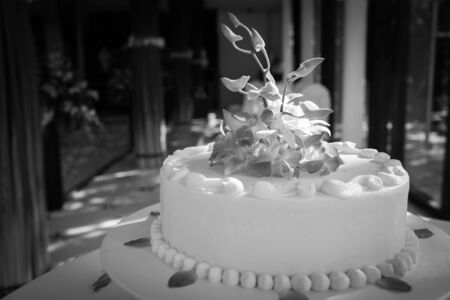 Beautiful Wedding Cake with Orchids on top.(Black and white) Stock Photo