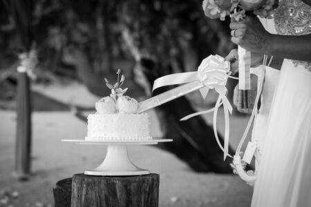 Wedding cutting a wedding cake on wedding day.(Black and white) Stock Photo
