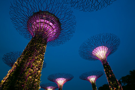 Gardens by the Bay is a park or botanic garden in Singapore. Editorial