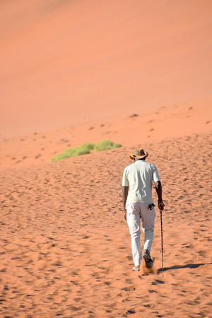 Local tourist guide with a hiking stick walking towards the famous sand dunes in the Namib-Naukluft park area in Namibia Southern Africa 免版税图像 - 97530802