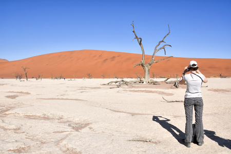 Female tourist taking a photo standing near trees in the dead or dry lake near the famous sand dunes in the Namib-Naukluft park area in Namibia Southern Africa 免版税图像