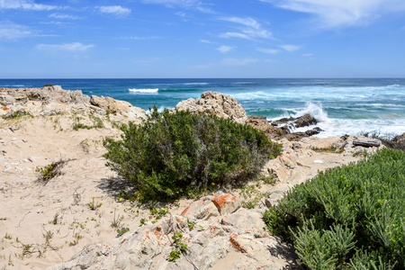 A view of the coastline and the beach of Robberg near Plettenberg Bay in South Africa with waves in the Indian Ocean and a blue sky 免版税图像 - 96494112