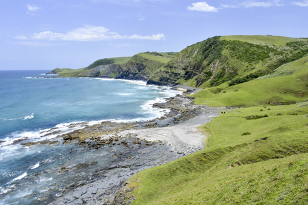 A view of the coast line seen from the green hills on the trail from Coffee Bay at the Indian Ocean in the Eastern Cape at the Wild Coast of South Africa to the hole in the wall Banco de Imagens