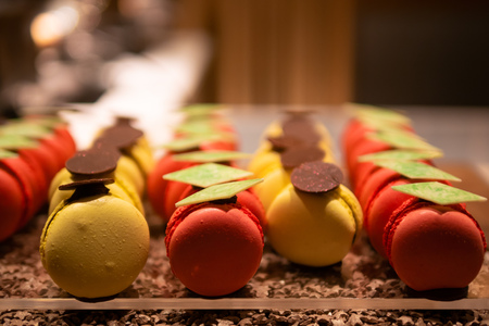 Tasty, delicious and colorful macarons or macaroons decorated with chocolate. Close up, selective focus, warm lighting.