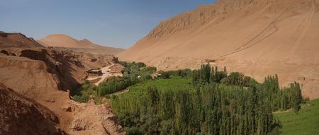 mountain oasis: Desert Oasis