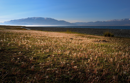 bole: Lakeside grassland