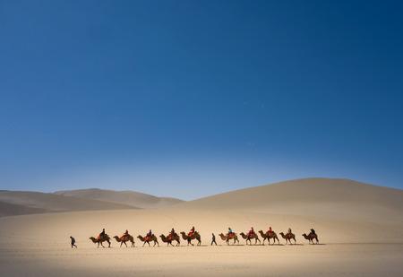 Mingsha 낙타