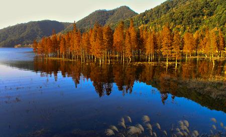 Ningbo Sanpu Reservoir Stock Photo