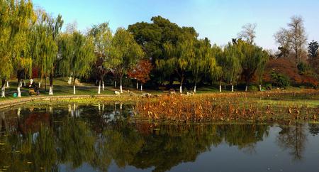 Xuanwu Lake in autumn Stock Photo
