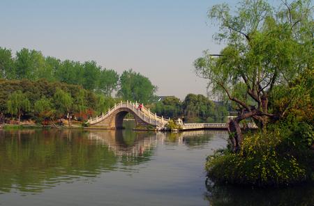 Slender West Lake spring