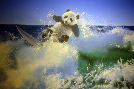 curare teneramente: panda