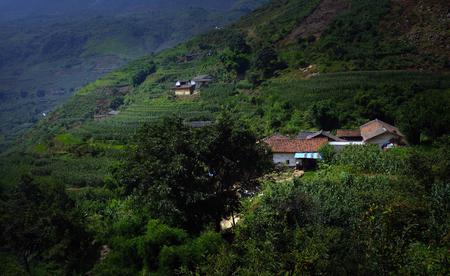residence: Village residence