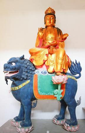 Riding lion
