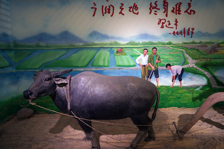 Cultivated land at jianchuan museum