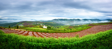 Dongchuan red land landscape scenery view