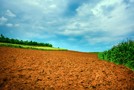 red dirt landscape view