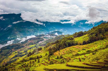Terrassen landschapsmening Stockfoto