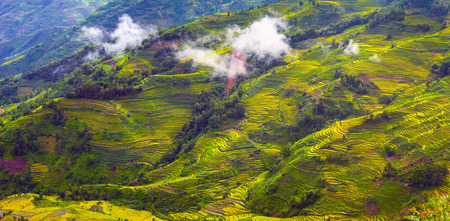 Terrassen natuur landschap landschap weergave