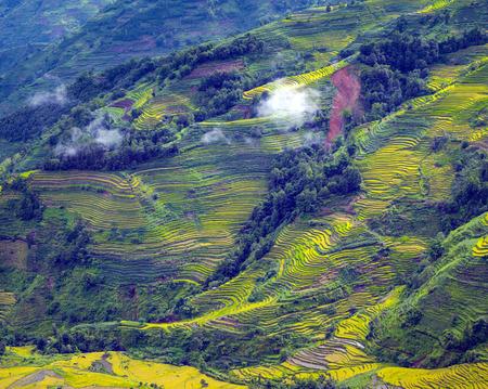 Het landschapsmening van het aardlandschap van terrassen Stockfoto