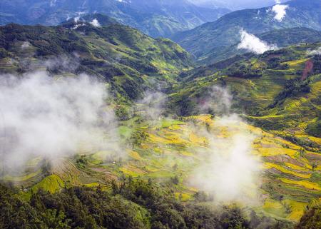 Gouden terrassen landschapsmening Stockfoto