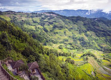 Terrasvormig veld in de bergen