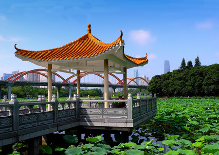 Lotus pond with Pavilion 스톡 콘텐츠