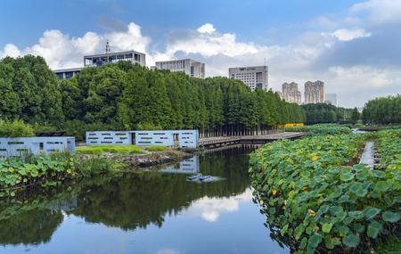 Zhangzhou scenery 版權商用圖片