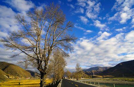 Xinduqiao scenery