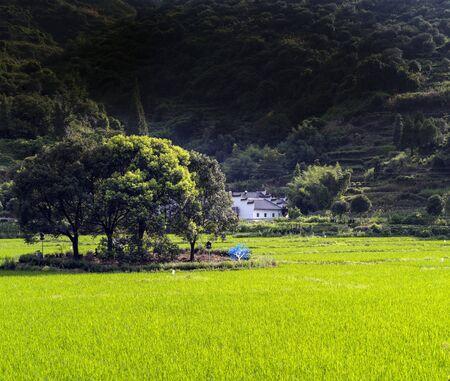 rural scenery 스톡 콘텐츠