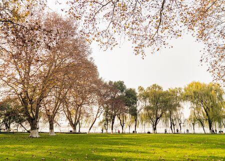 Autumn lakeside 写真素材