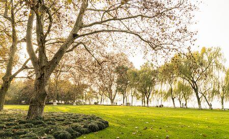Autumn park 写真素材